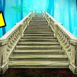 Why Abandoned Stairs Keep Appearing in Woods Randomly