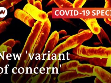 How dangerous is the Indian variant of the coronavirus?   COVID-19 Special