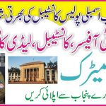 Police Constable Jobs 2021 | How To Get Punjab Assembly Jobs | New Govt Jobs 2021 | Say Job City