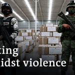 Mexicans to vote amid violence against politicians | DW News