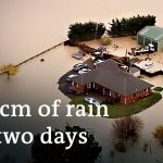 New Zealand calls state of emergency over torrential flooding | DW News