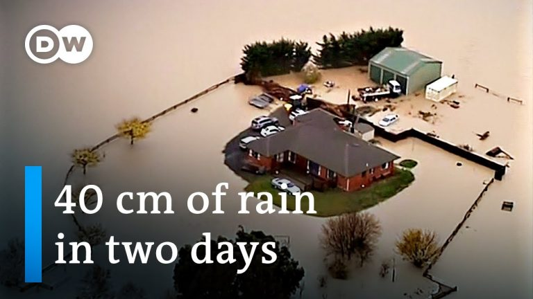 New Zealand calls state of emergency over torrential flooding   DW News