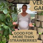 Small Space Container Vegetable Gardening 3