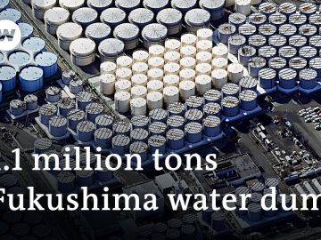 Fukushima radioactive waste water to be dumped into the sea   DW News
