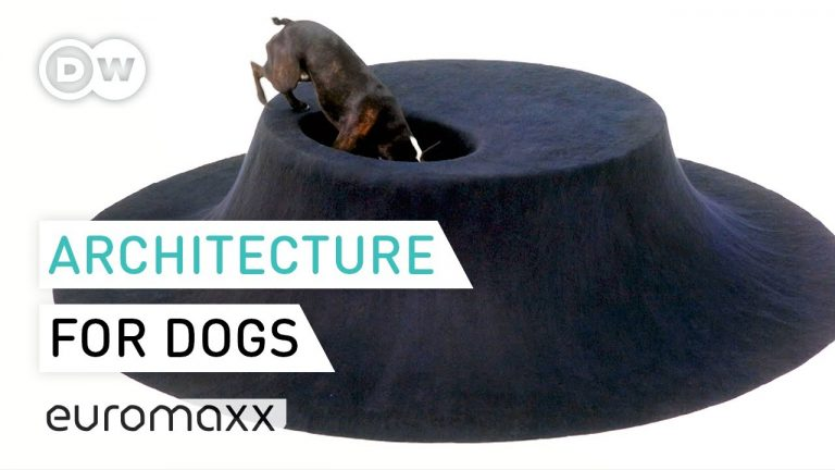 Playful Architecture And Furniture Made For Dogs | Architecture For Dogs In London