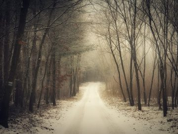 25 Most Haunted Roads We Dare You To Drive On