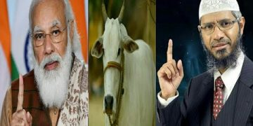 What is the sin of killing cows ? Dr Jakir Naik ll Narendra Modi