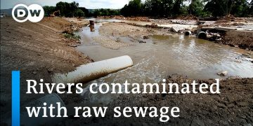 German floods leave fears of public-health catastrophe in their wake | DW News