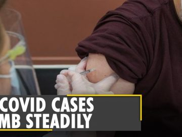 New York: COVID cases rise as Delta variant spreads   United States   Latest World English News