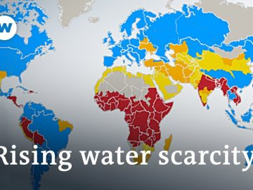 How to stop the rising threat of water scarcity | DW News