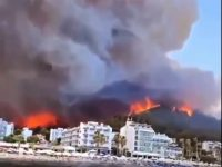 forest fires have been raging across the country 28