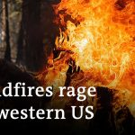 Wildfires ravage west coast of the United States | DW News