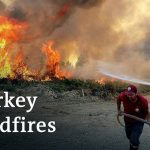 Turkey wildfires: Death toll rises with hundreds injured   DW News