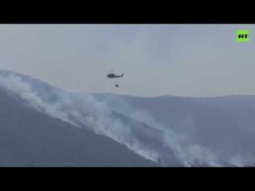 Fire in Lebanon | Massive wildfires ravage the country's north