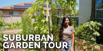 She Grows 50% Of Her Groceries At Home 🏡 | Suburban Garden Tour 13