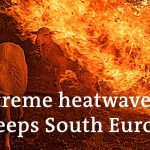 Southern Europe wildfires: A climate threat? | DW News
