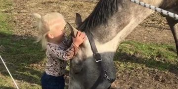 Little Girl with Horse! 3