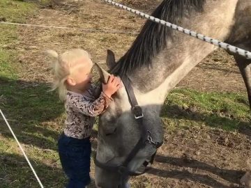 Little Girl with Horse! 6