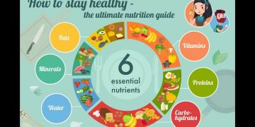How To stay Healthy| The Ultimate Nutrition Guide 16