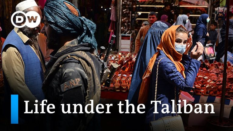 Afghans attempt a return to normal life under the Taliban   DW News