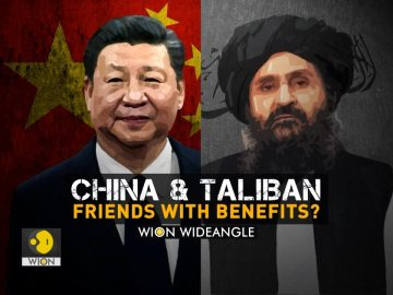 Wion Wideangle | China and the Taliban: friends with benefits?