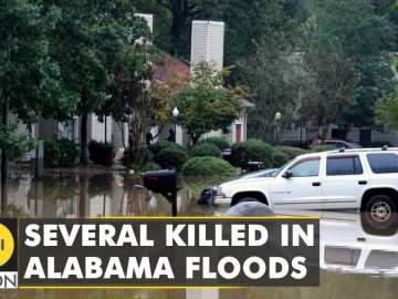 US: Heavy rains trigger floods in Alabama, several killed | WION Climate Tracker | WION English News
