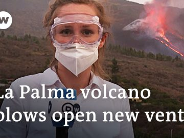 More destruction feared in La Palma as lava pours from new volcano vent | DW News