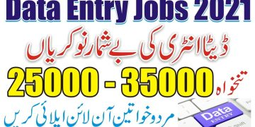 How To Get Data Entry Jobs | Work From Home Without Investment | Data Entry Typing Jobs From Home