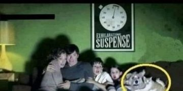 What movie are they watching? 14